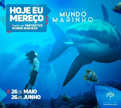 Exposição de animais do mundo marinho chega no Shopping Bosque dos Ipês